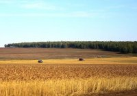 Сельхозтоваропроизводителям Иркутской области будут оказывать поддержку по вводу в оборот неиспользуемой пашни