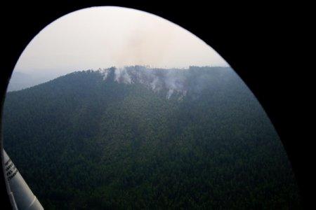 Число лесных пожаров сокращается