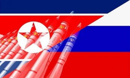 «Реалист». Поддержка Россией резолюции против КНДР льёт воду на мельницу Японии