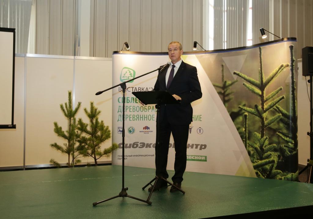 Сергей Левченко: часть задач по улучшению ситуации в лесной отрасли решена