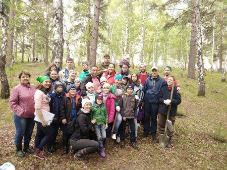 Пионеры со старшими товарищами высадили на Синюшиной горе более 130 деревьев