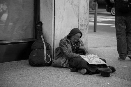 Коронавирус плодит миллионы бездомных